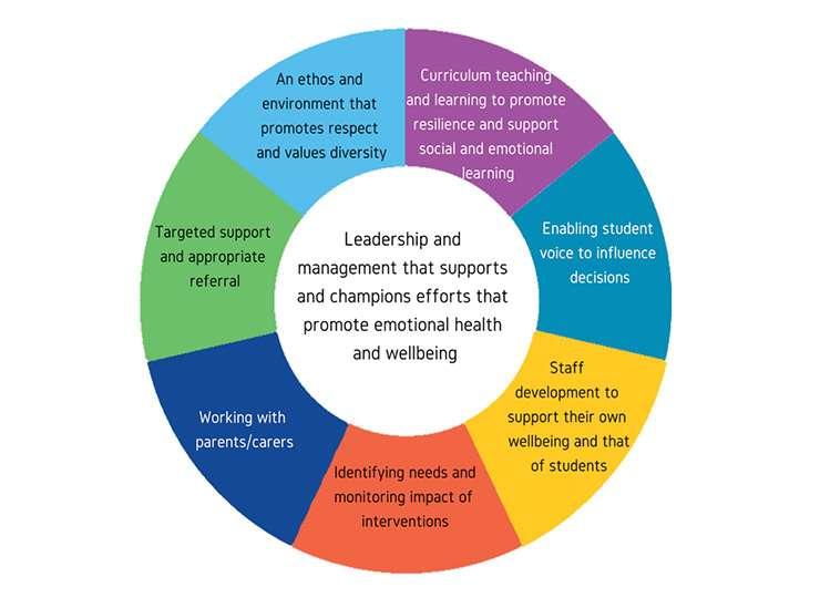 8-principle-wheel Young people mental health